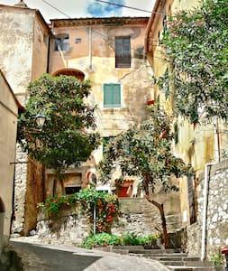 Charming apartment in Elba Island - Apartment
