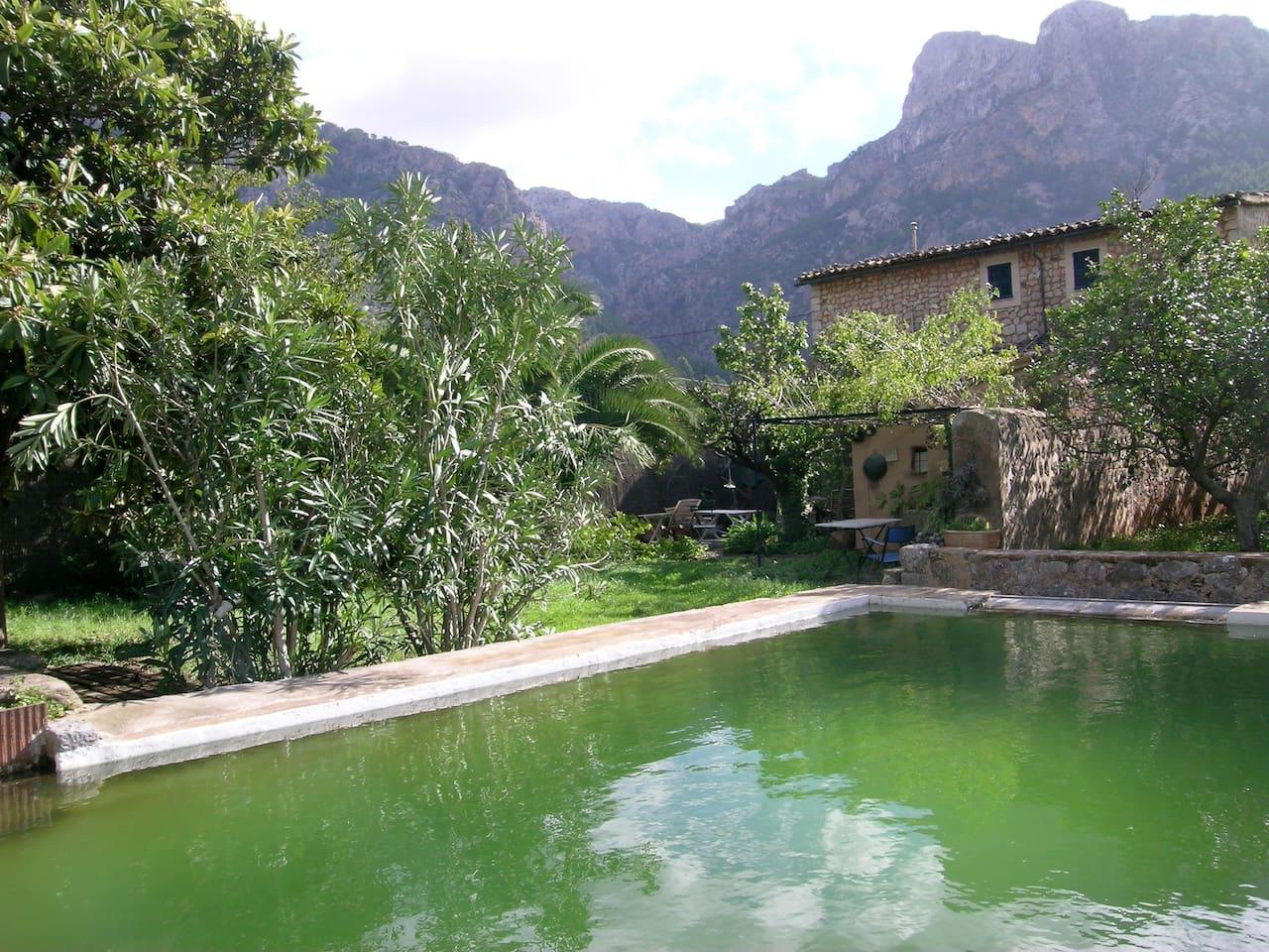 garden with reservoir
