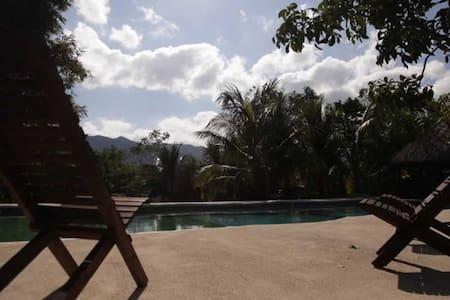 Colombre en La selva de Palenque 4p - Chalet