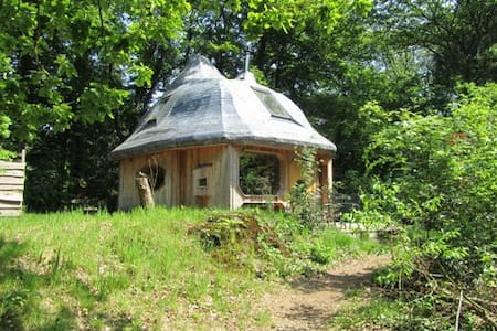 Discover this fantastic Arthouse - Schipborg - Cabin