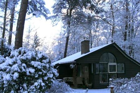 Romantic cottage - Cabin