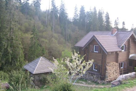 wooden log cabin in the Carpathian mountains - Haus