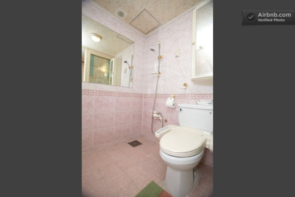 Your private shower, toilet beside the private washroom