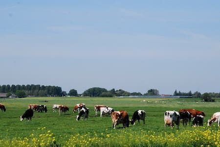Farm logies/bed and breakfast - Alphen Rijn - Bed & Breakfast