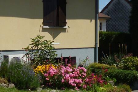 ENDROIT SYMPA ET CALME - Guewenheim - Lägenhet