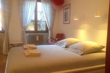 Nice and room in the historical center of Colmar - Colmar