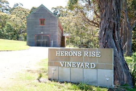 Herons Rise Vineyard  Accommodation- The Wine Loft - Kettering