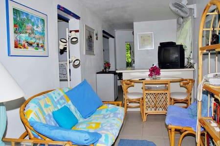 5 minute walk to Cruz Bay, Quiet Studio Apartment. - Apartment