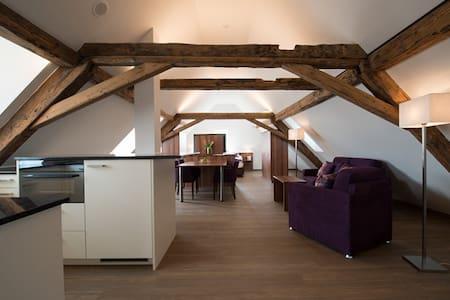 Dachwohnung Hecht - Fehraltorf - Service appartement