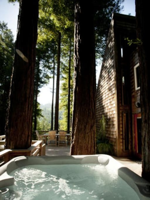 Hot tub with redwoods