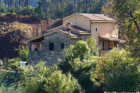 L'Erba Persa a Casa Villara 1 - Beverino - Other