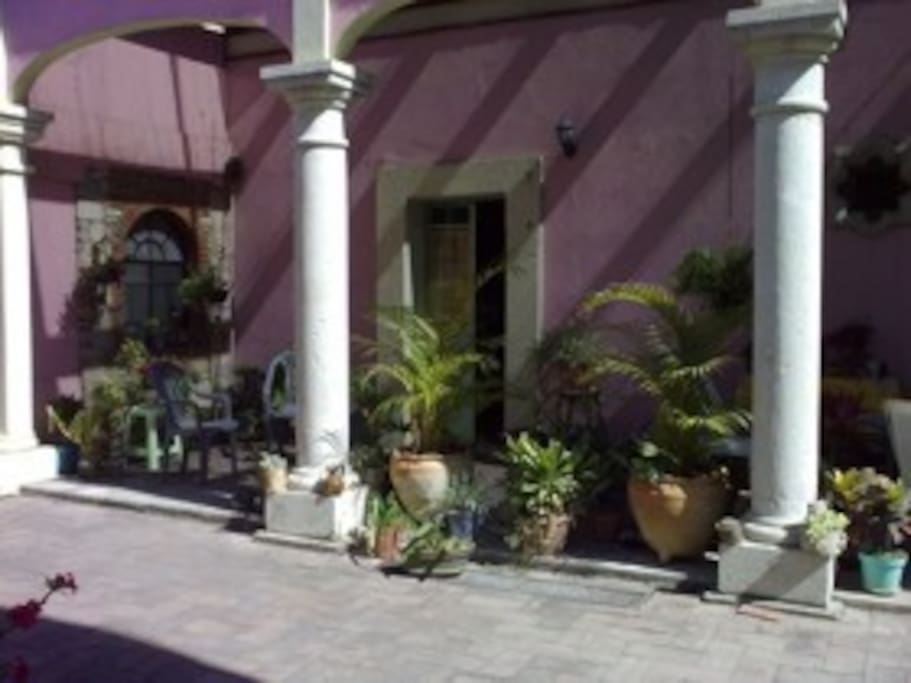 Plants in the patio, nice area for breakfast al fresco