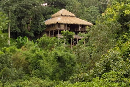 Tree House Hideaway Tours