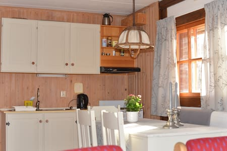 Geilo, Hallingdal  m/kjøkken og bad - Haus