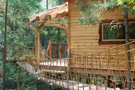 Hébergements insolites/écologiques - Nominingue - Hus i træerne