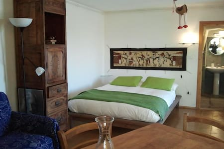 Comfortable bed-sit in the wood - San Pietro Val Lemina
