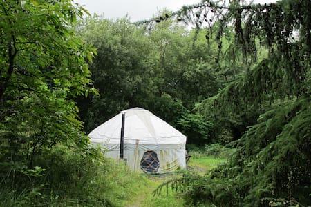 Yurt Holidays in  beautiful Wales - Yurt