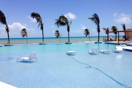Kitesurf Paradise! Beach Front! - Daire