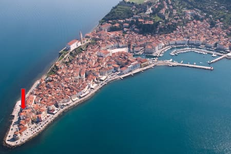 Piran Punta Beach Apartment - Piran - Byt