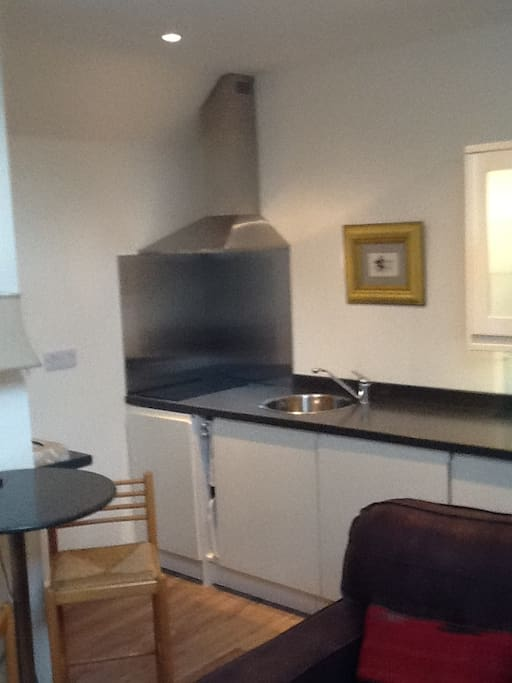 Kitchen view - two hob electric cook-top with extractor above, fridge and storage.