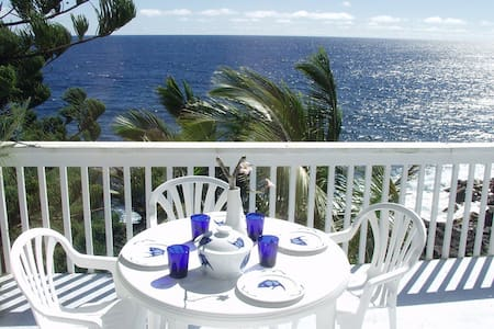 Oceanfront 1bd in tropical area