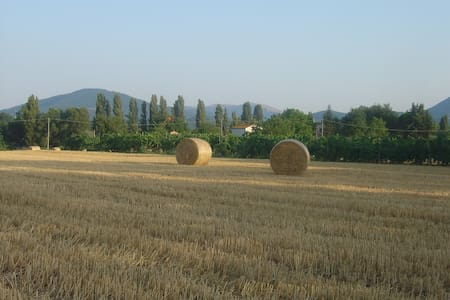 Relax nelle campagne umbre-Montone - Umbertide - Apartment