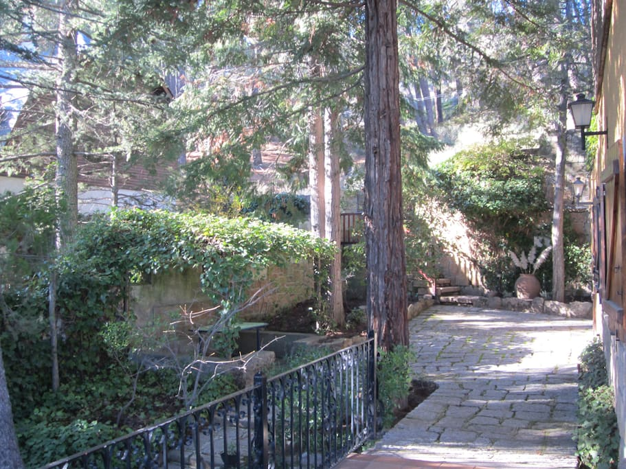 The garden with gazebo background