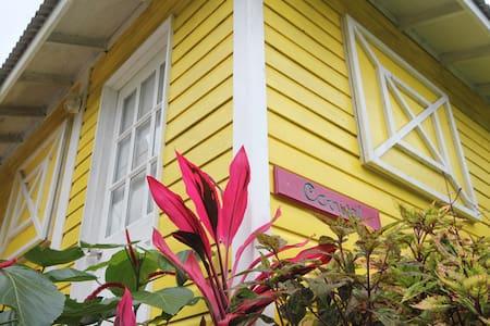 'Carnival' Cabin in the Rainforest - Rosalie