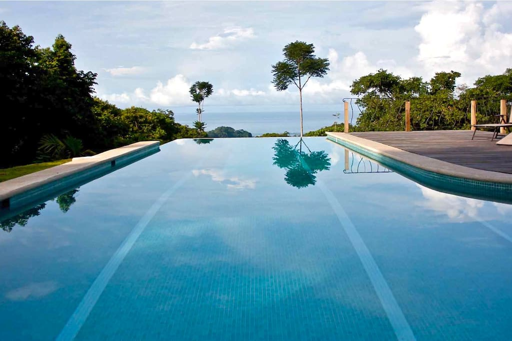 Dive into the 45 foot infinity lap Pool