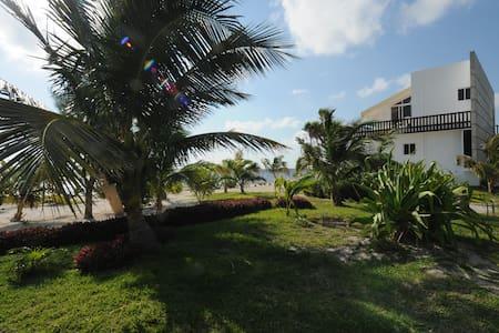 Caribbean Ocean View Apartment - Apartment