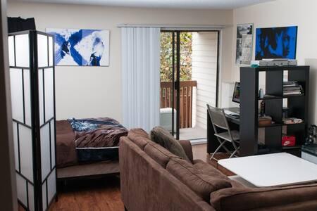 VANCOUVER, commercial dr. LRG studio apartment - Apartment