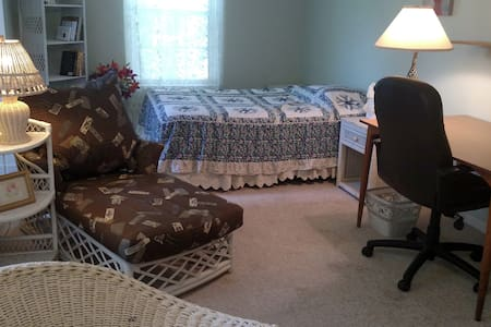Charming, large, sunny, queen bedroom; nice hosts - Bedminster Township - Haus