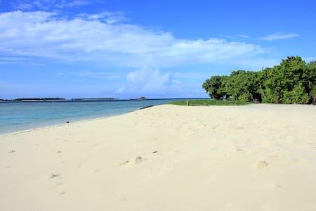 Sea, Sun, Sand Maldives on a Budget - Penzion (B&B)