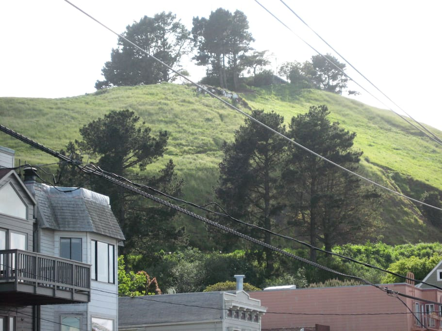 View of Bernal Hill from the condo entrance and the guest bedroom window
