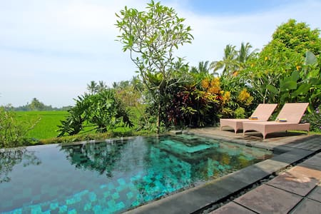 Modern spacious villa with pool - Ubud - Villa