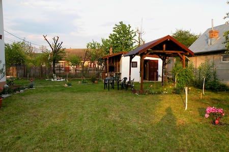 Holiday house near Prahova Valley - Brebu - Casa
