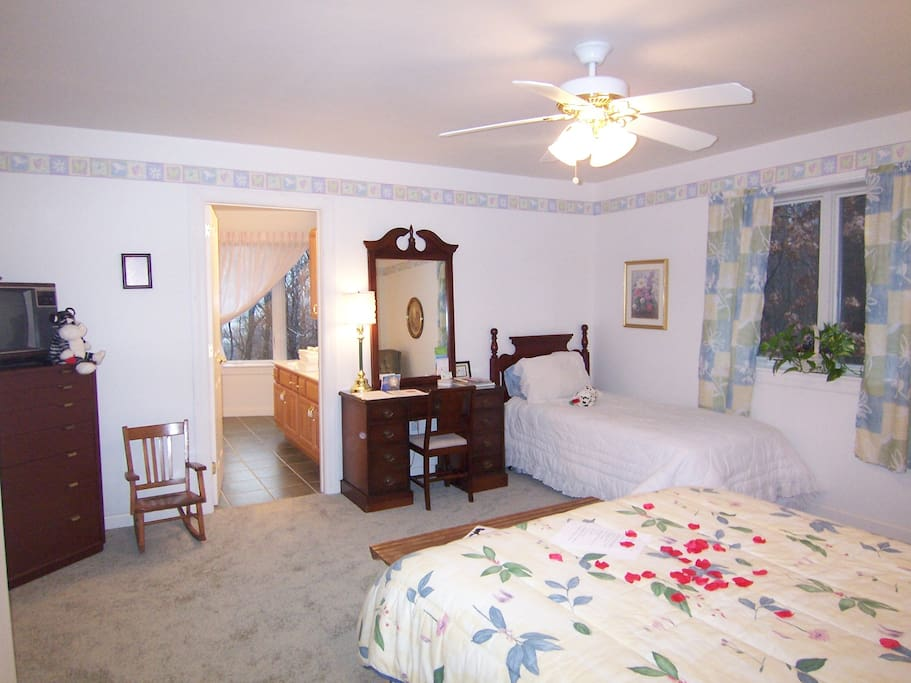 Dream suite- queen & single beds. Bath w/ a double sink,  6'x 3' whirlpool tub /shower. Electric fire place..