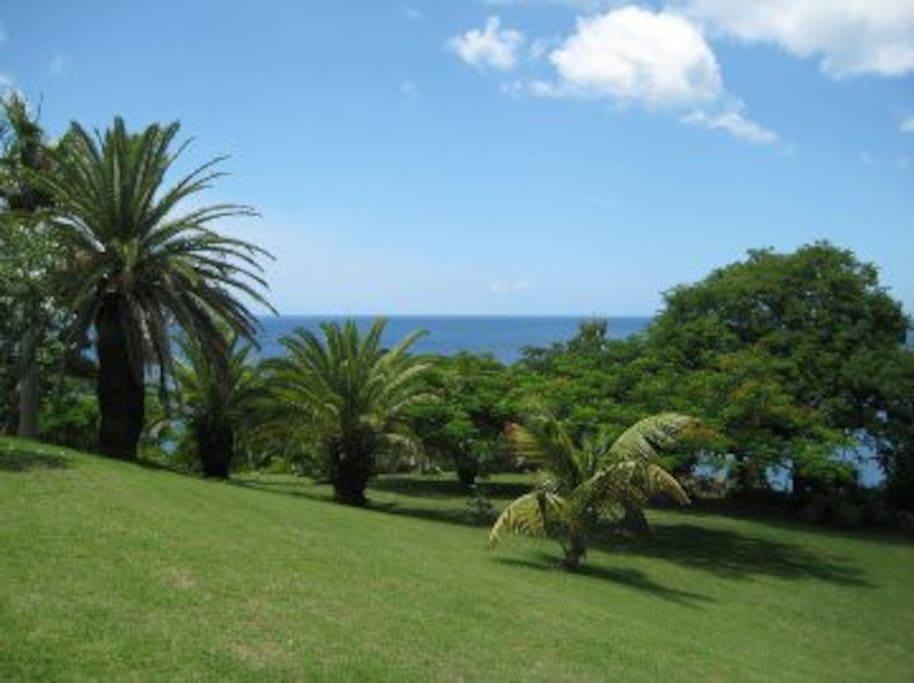 Luxury and Adventure in Montserrat!
