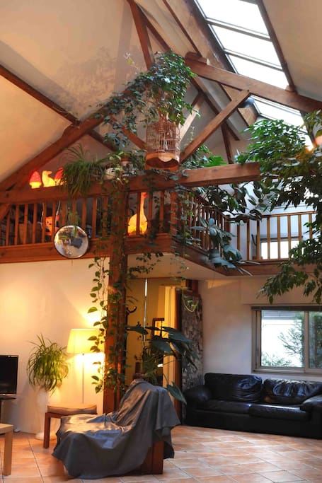 Living room and mezzanine