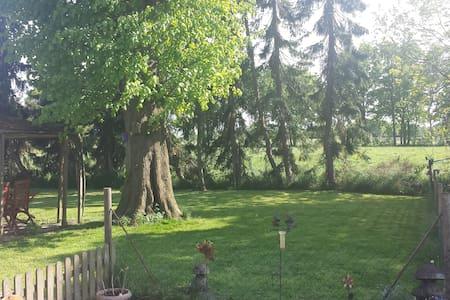 Erholung im Grünen Ostfrieslands - Rhauderfehn - Hus