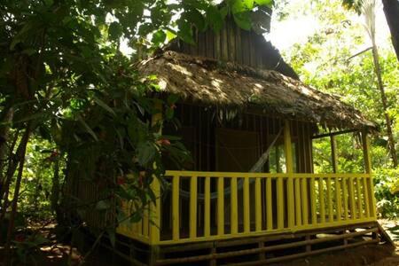 Omshanty jungle lodge - Cabin