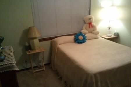 Quiet, convenient room & bath, easy - Austin - House