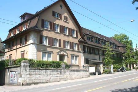 TOP 3 1/2 Zimmer-Dachwohnung - Schaffhausen