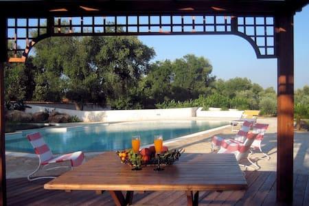Villa with pool in beautiful garden