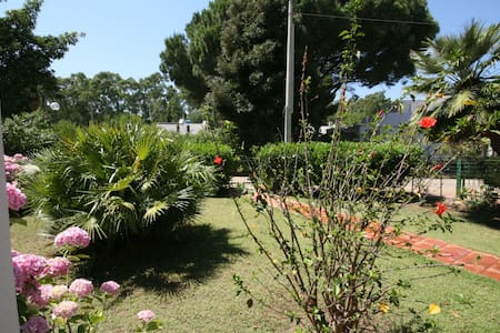 Villa Lola Strandnah Südsardinien  - Villa