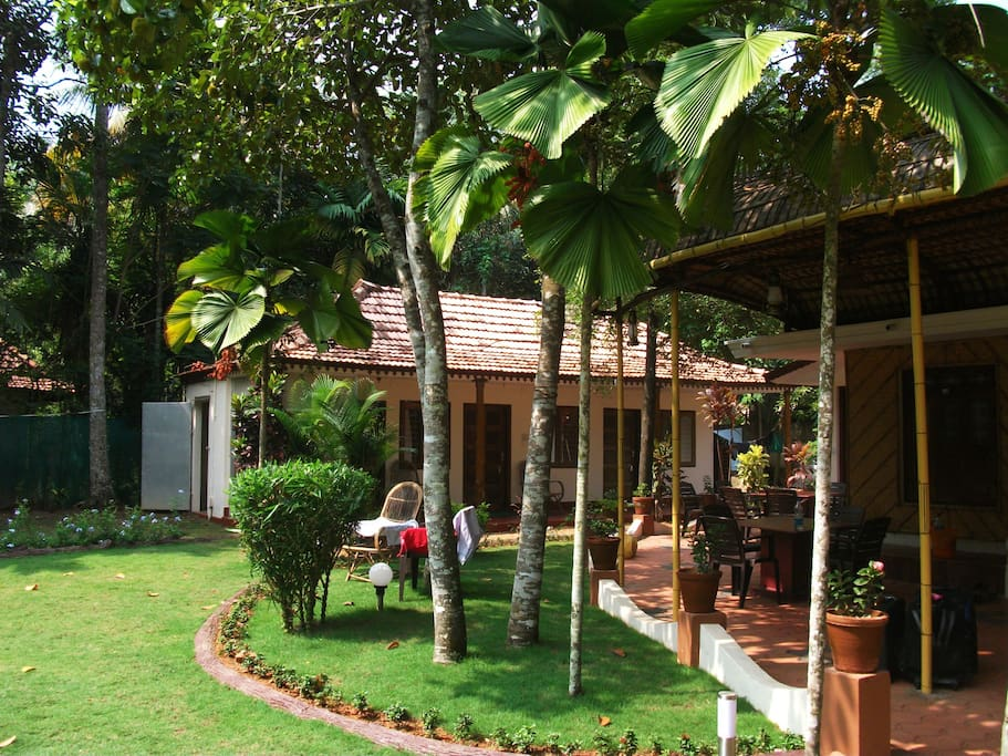 Vedanta Wake up! along the dreamy backwaters, Alleppey