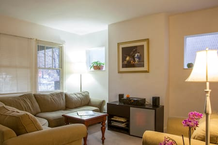 Squirrel Hill Townhouse Pittsburgh  - Ház