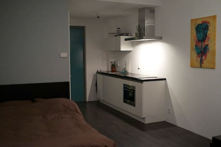 Small but complete Studio for rent! - Amsterdam - Apartment