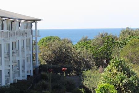 Oceanview Apartment at the Beach! - Apartment