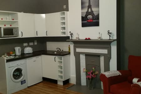 No. 1 is a large 1bedroom apartment which is located in the heart of one of Dublins most historic areas, 400 mts to Kilmainham Gaol, 600mt to St.James Hospital & 500mts to Luas Red Line. This apartment is within a charming 3 storey redbrick house.